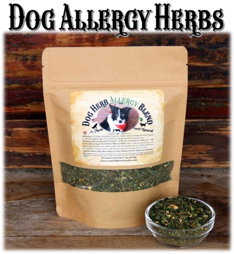 Dog Allergy Herbs